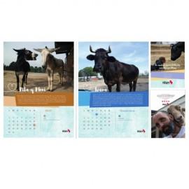 Calendario Solidario  Wings of Heart